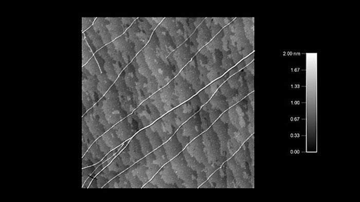 Carbon nanotubes and bundles on quartz atomic steps, taken with Tap300Al-G AFM probes on an Asylum Cypher AFM.