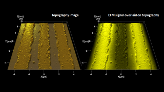Tapping mode topography (left) and electrostatic force microscopy overlaid on topography (right) images of metal lines on an insulating substrate. EFM helps distinguish the two lines biased at 3V from the grounded one in the middle.