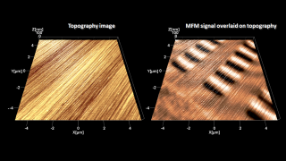 Tapping mode topography (left) and magnetic force microscopy overlaid on topography (right) images of the surface of a harddrive platter. MFM reveals the hidden bits of information stored by magnetizing small regions of a ferromagnetic film.
